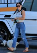 Lucy Hale drops off her pooch Elvis for grooming at Sam's Green Paw in Los Angeles