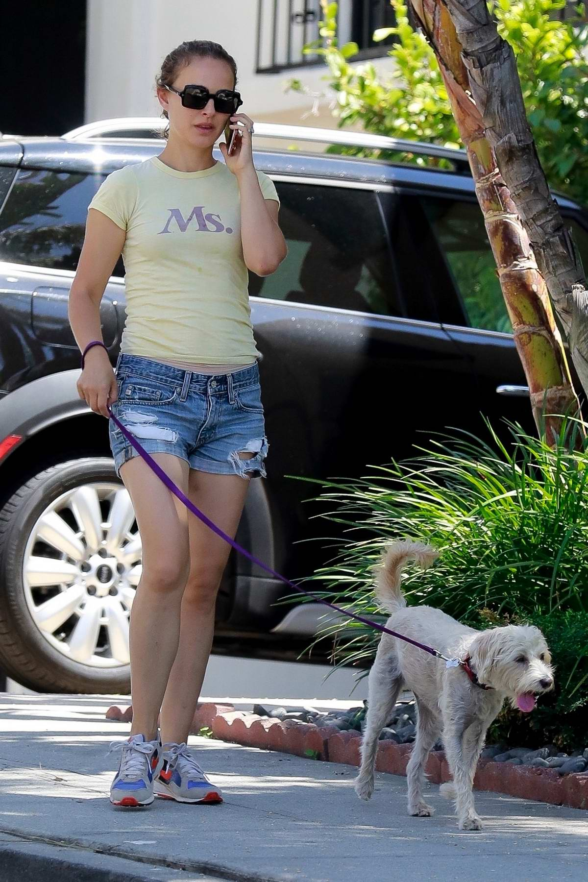 Natalie Portman chats on the phone while taking her dog for a stroll after lunch in Los Angeles