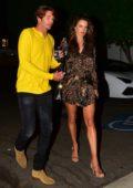 Alessandra Ambrosio looks stunning in animal print during a date night with Nicolo Oddi in Santa Monica, California