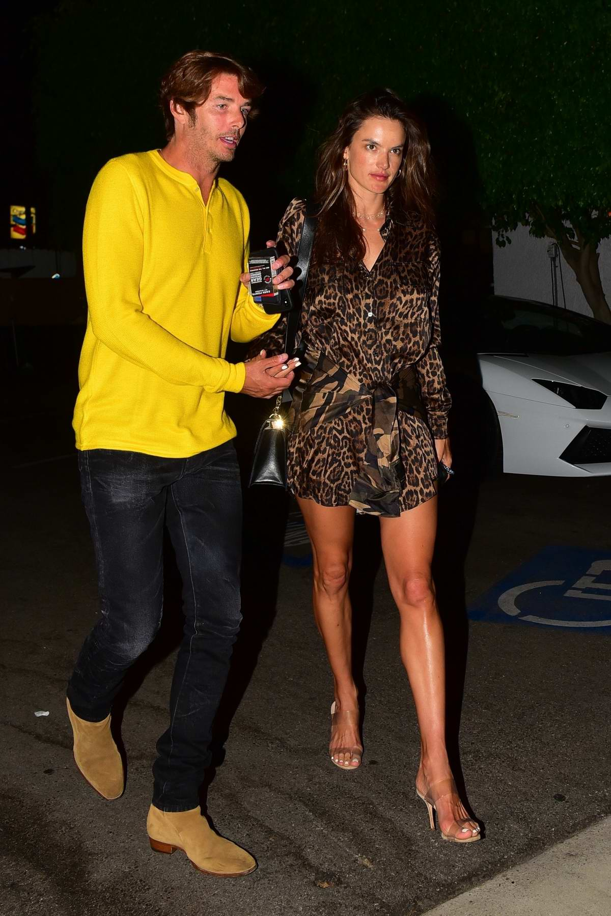 Alessandra Ambrosio looks stunning in animal print during a date night with Nicolo Oddi in Santa Monica, California