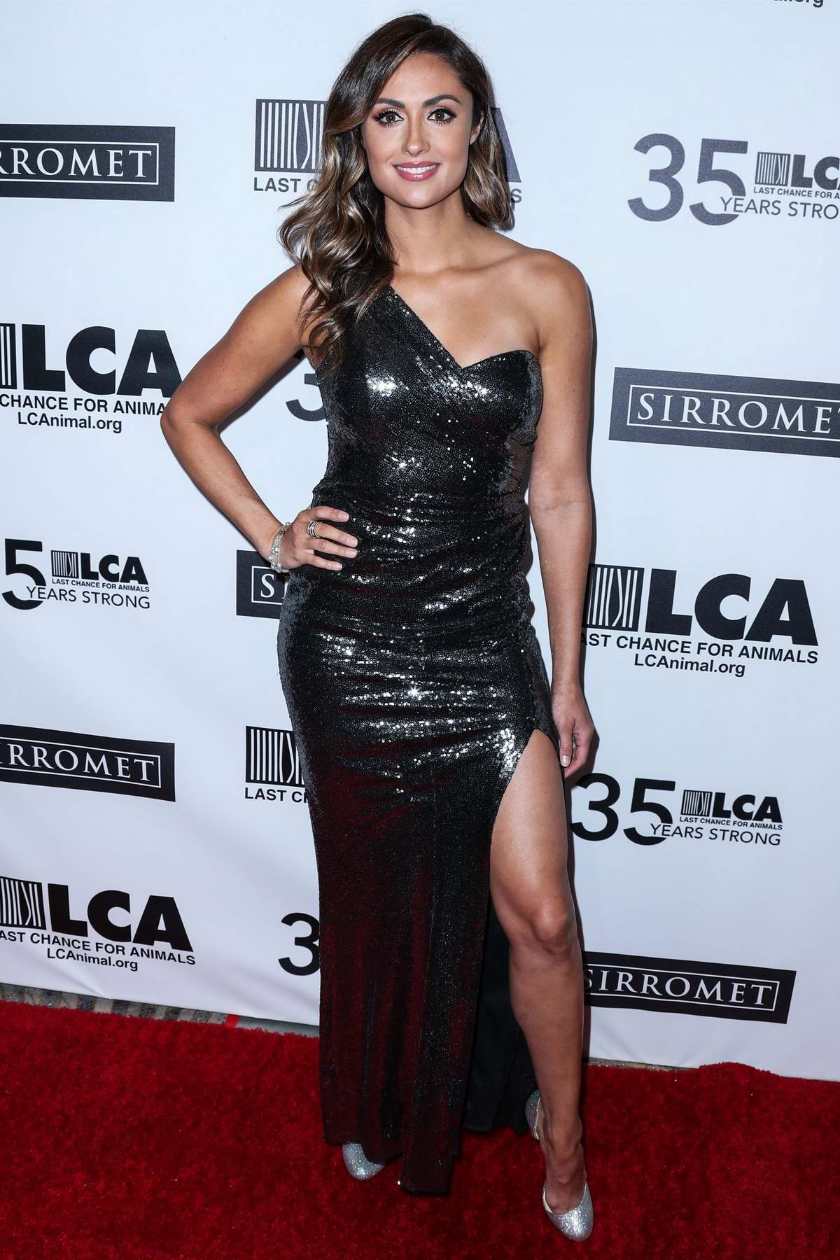 Katie Cleary attends the 35th Anniversary 'Last Chance for Animals' Gala at The Beverly Hilton in Los Angeles