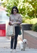 Lucy Hale wears a striped top and jeans as she takes her dog Elvis for a morning walk in New York City