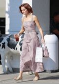 Zoey Deutch looks cute in a checkered dress and matching handbag while picking up food from Joan's on Third in Studio City, Los Angeles