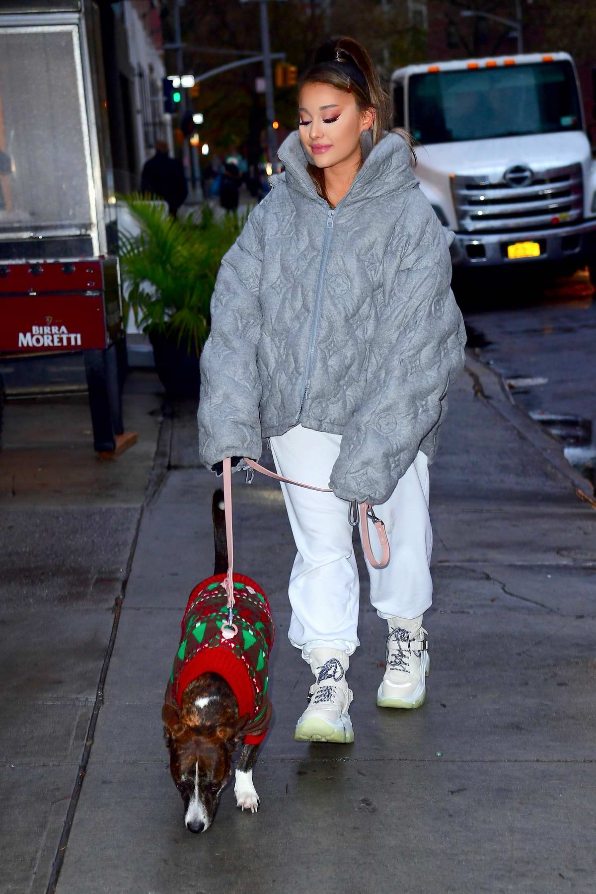 Ariana Grande wears a Louis Vuitton puffer jacket as she steps out with her dog in New York City