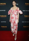 Karen Gillan attends the Red Carpet and Photocall of 'Jumanji: The Next Level' at Montage Los Cabos in Cabo San Lucas, Mexico