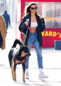 Emily Ratajkowski flaunts her perfect abs while on a stroll with her dog Colombo in New York City
