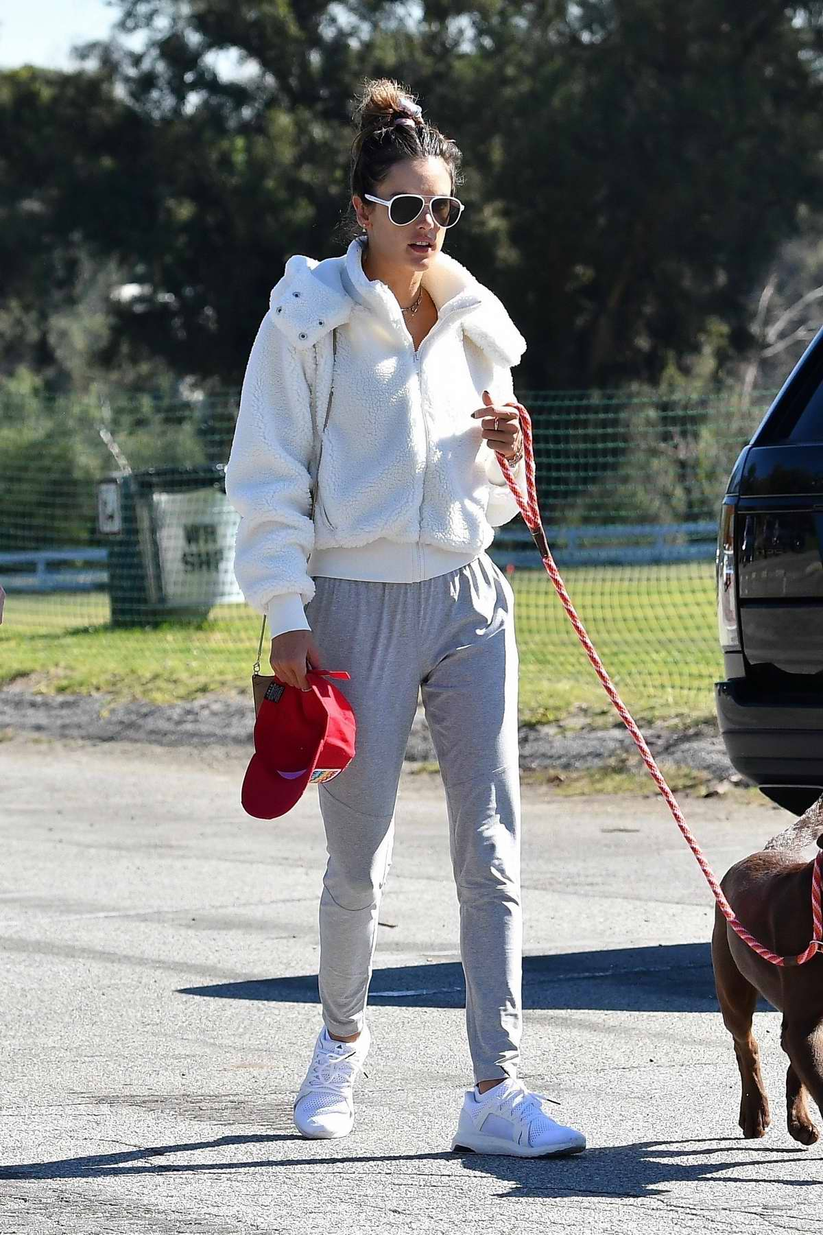 Alessandra Ambrosio takes her dog while out for a hike with a friend in Pacific Palisades, California