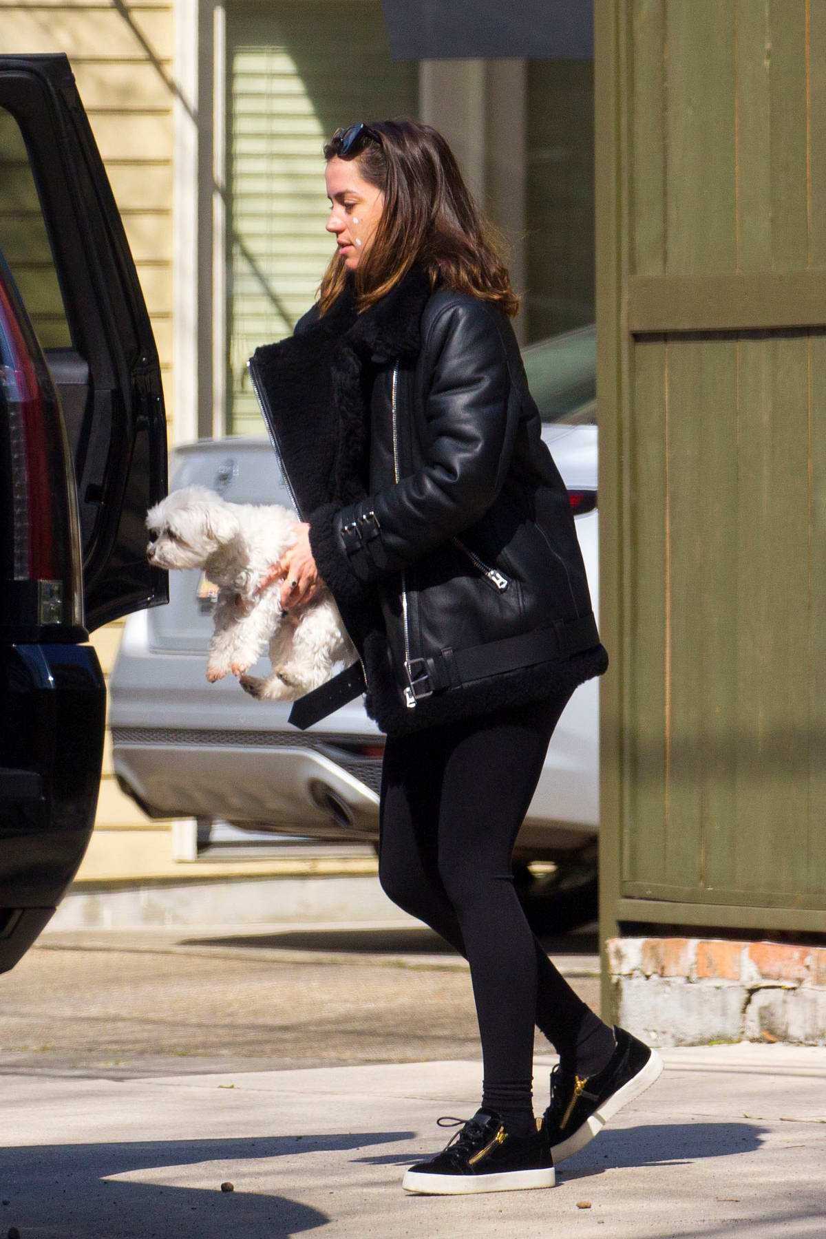 Ana de Armas spotted with her dog and zit cream on her face as she heads to the set of 'Deep Water' in Louisiana