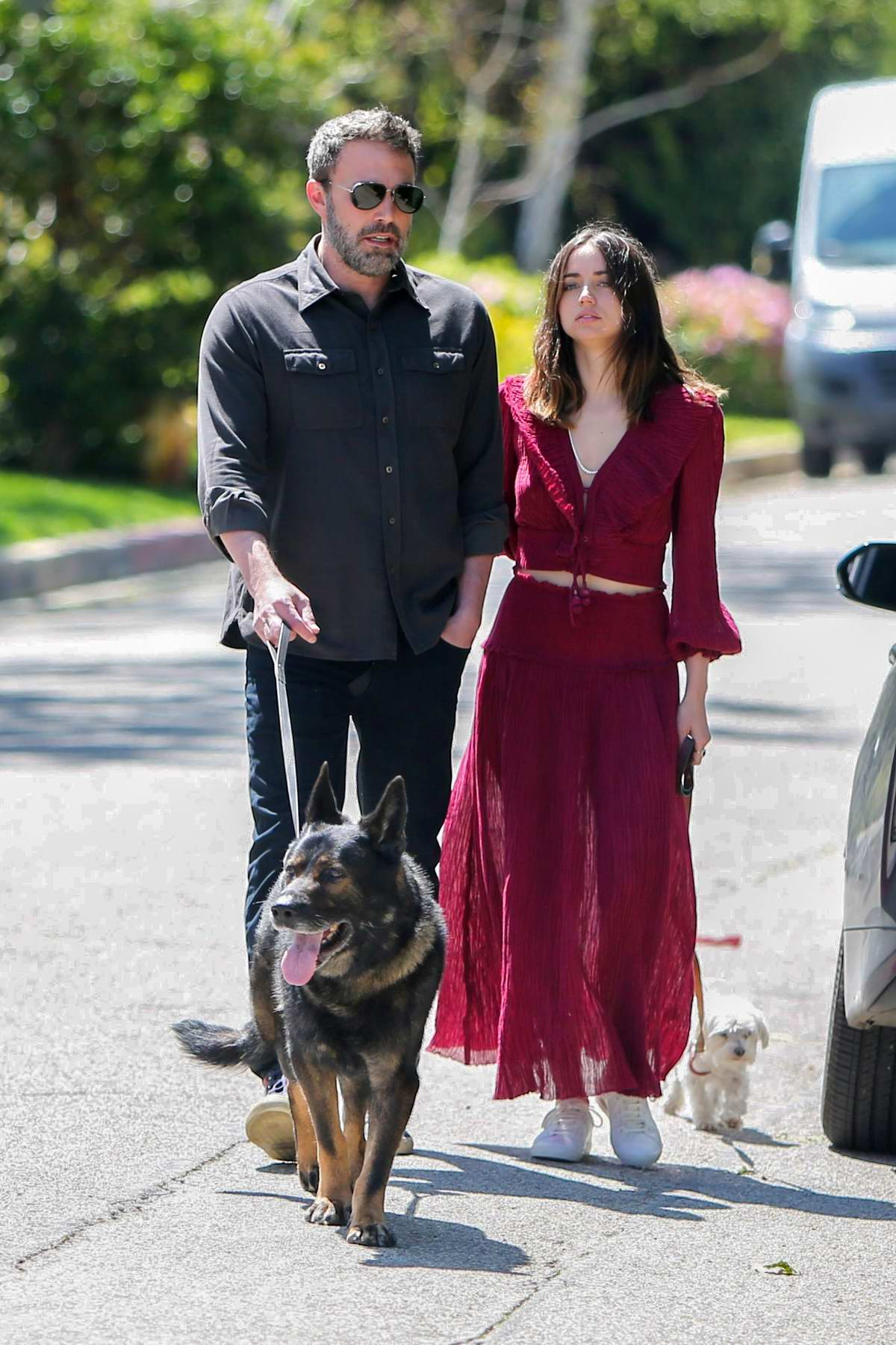 Ana de Armas and Ben Affleck hold hands as they take their dogs for a walk in Los Angeles