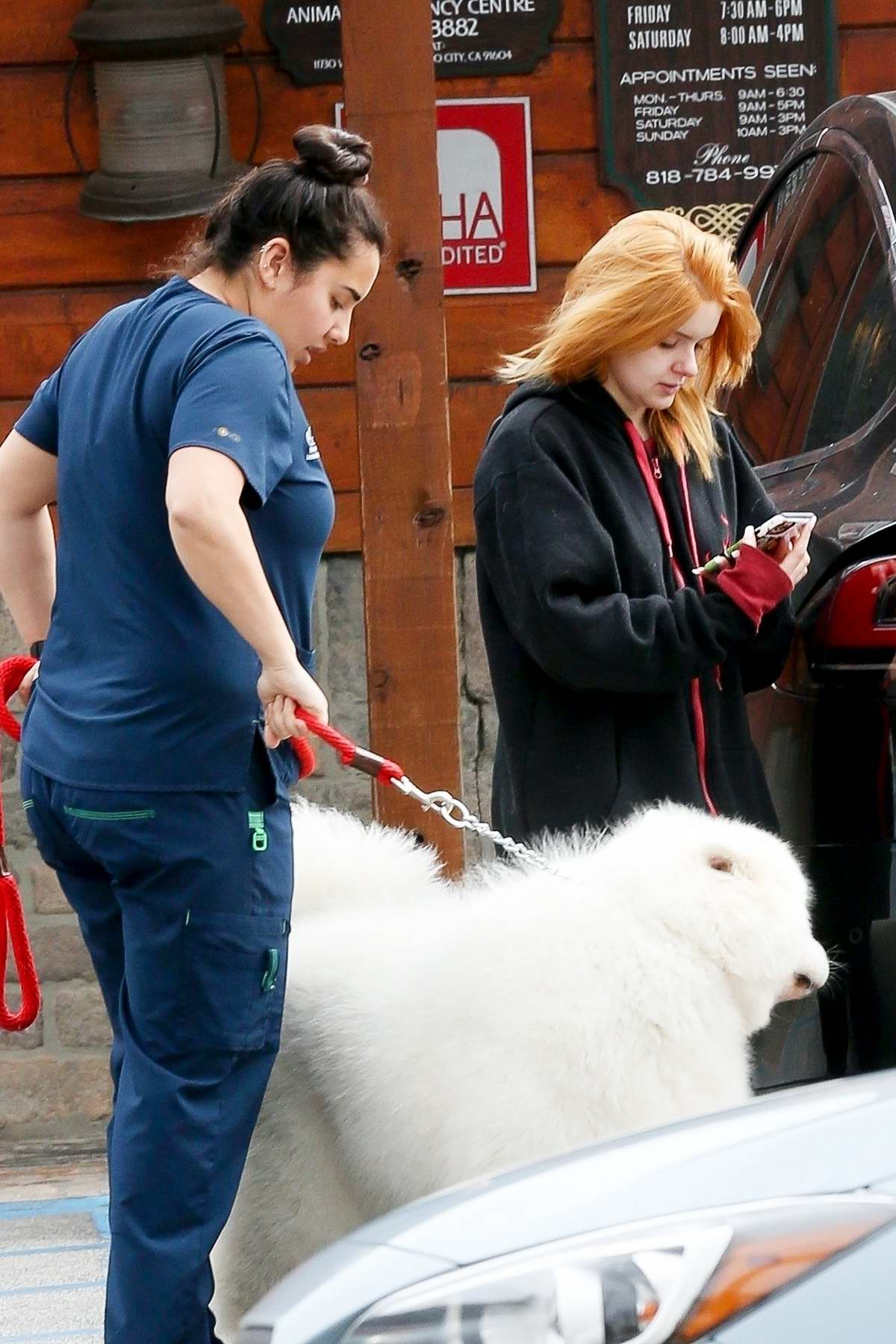 Ariel Winter takes her dogs to the veterinary in Sherman Oaks, California