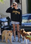 Aubrey Plaza wears a hoodie and shorts as steps out to walk her dogs through her neighborhood in Los Angeles