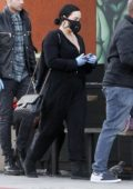 Demi Lovato seen wearing a mask and gloves while shopping groceries at Erewhon in Los Angeles