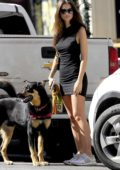 Emily Ratajkowski wears a black mini dress while out with her dog in New York City