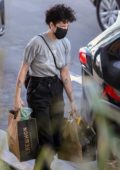 Halsey seen wearing a black mask while shopping groceries at Erewhon Market in Los Angeles