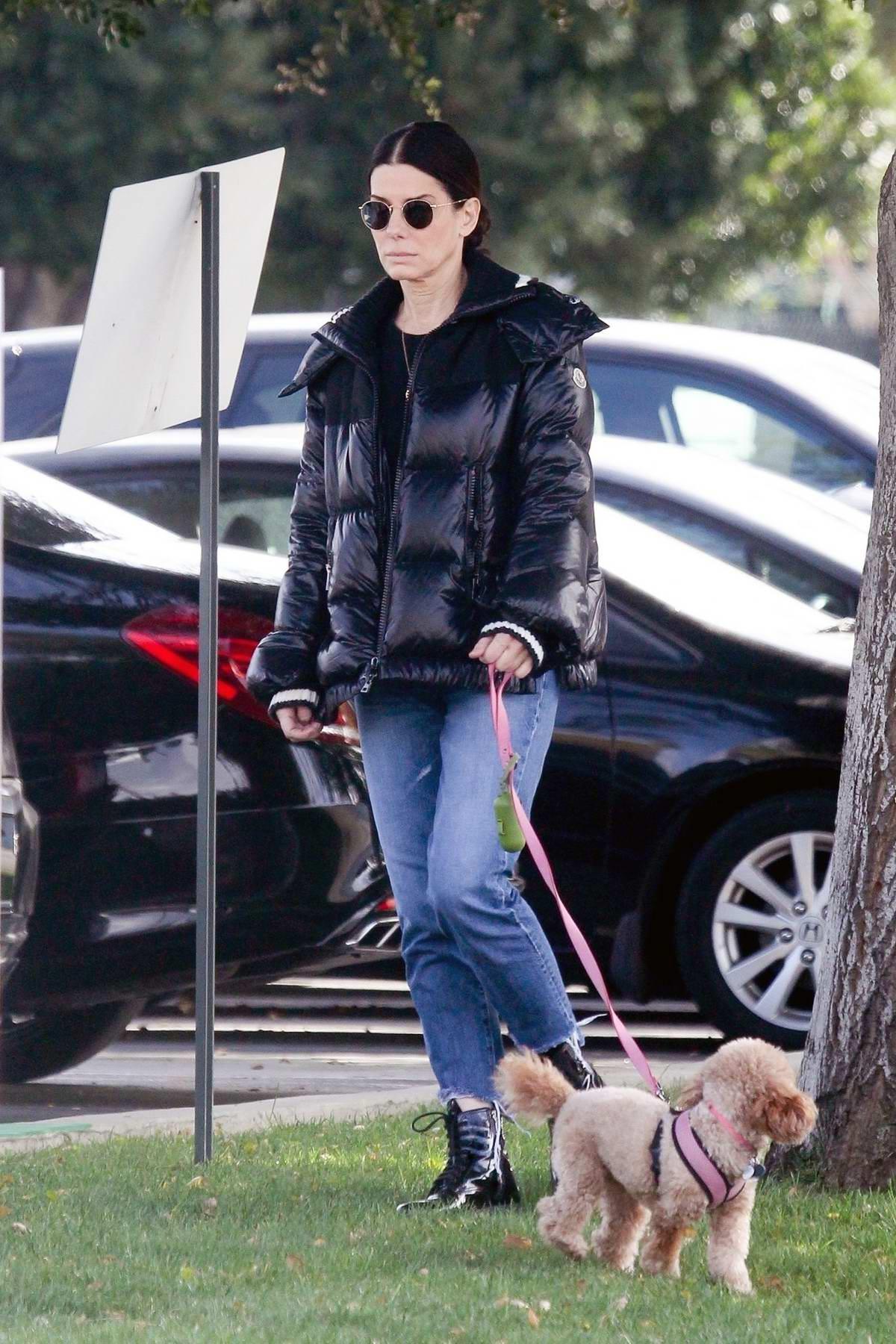 Sandra Bullock takes her pooch out for an afternoon walk in Van Nuys, California