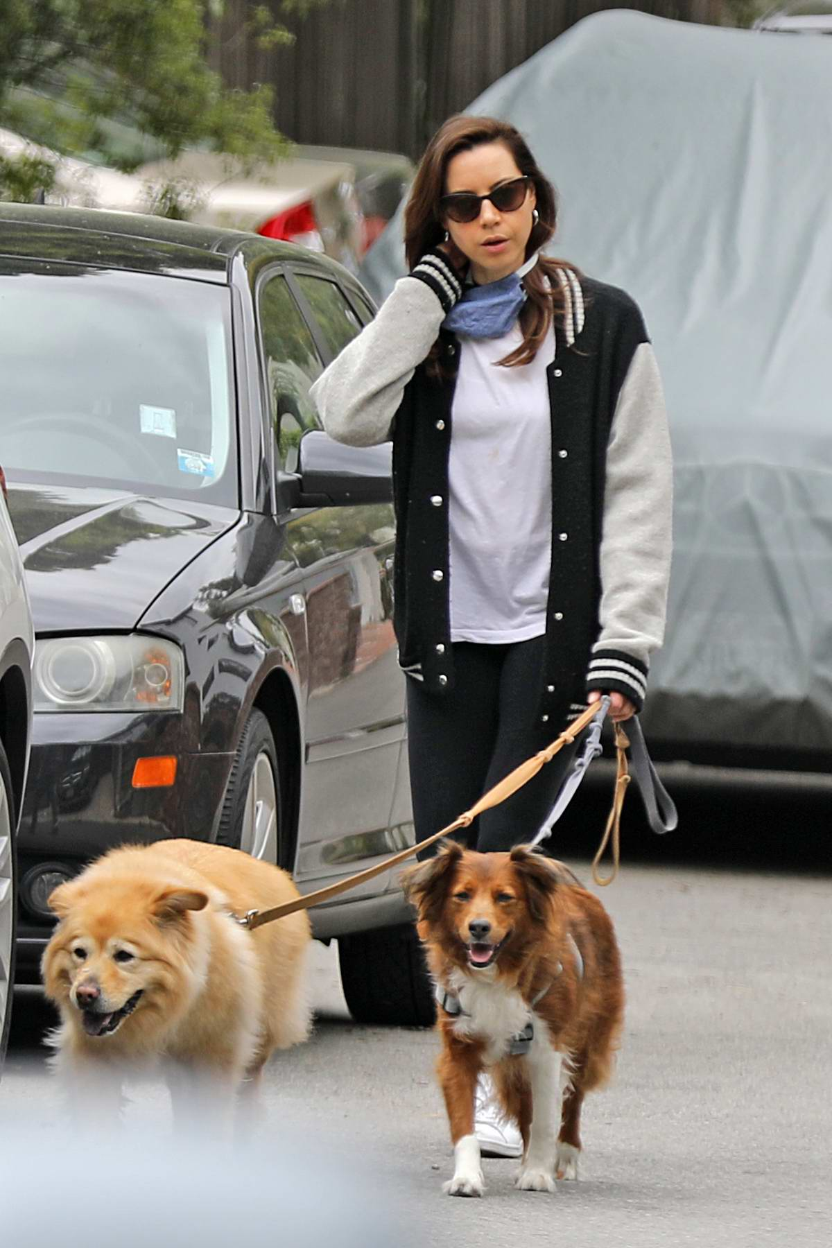 Aubrey Plaza seen walking her two dogs in Los Angeles