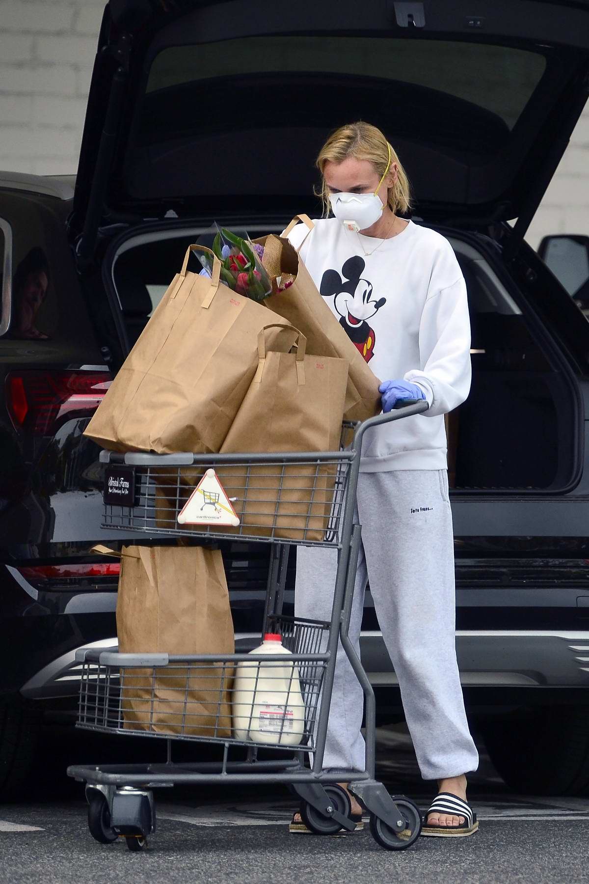 Diane Kruger and Norman Reedus stepped out for some grocery shopping in Los Angeles