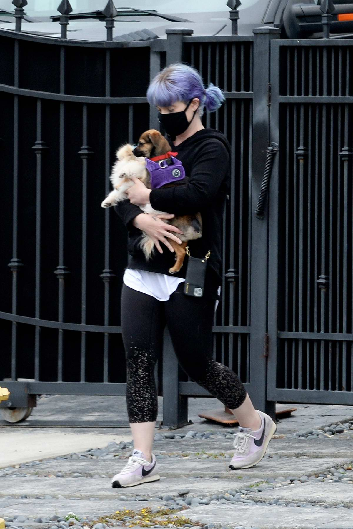 Kelly Osbourne cradles her two dogs while stepping out in Los Angeles