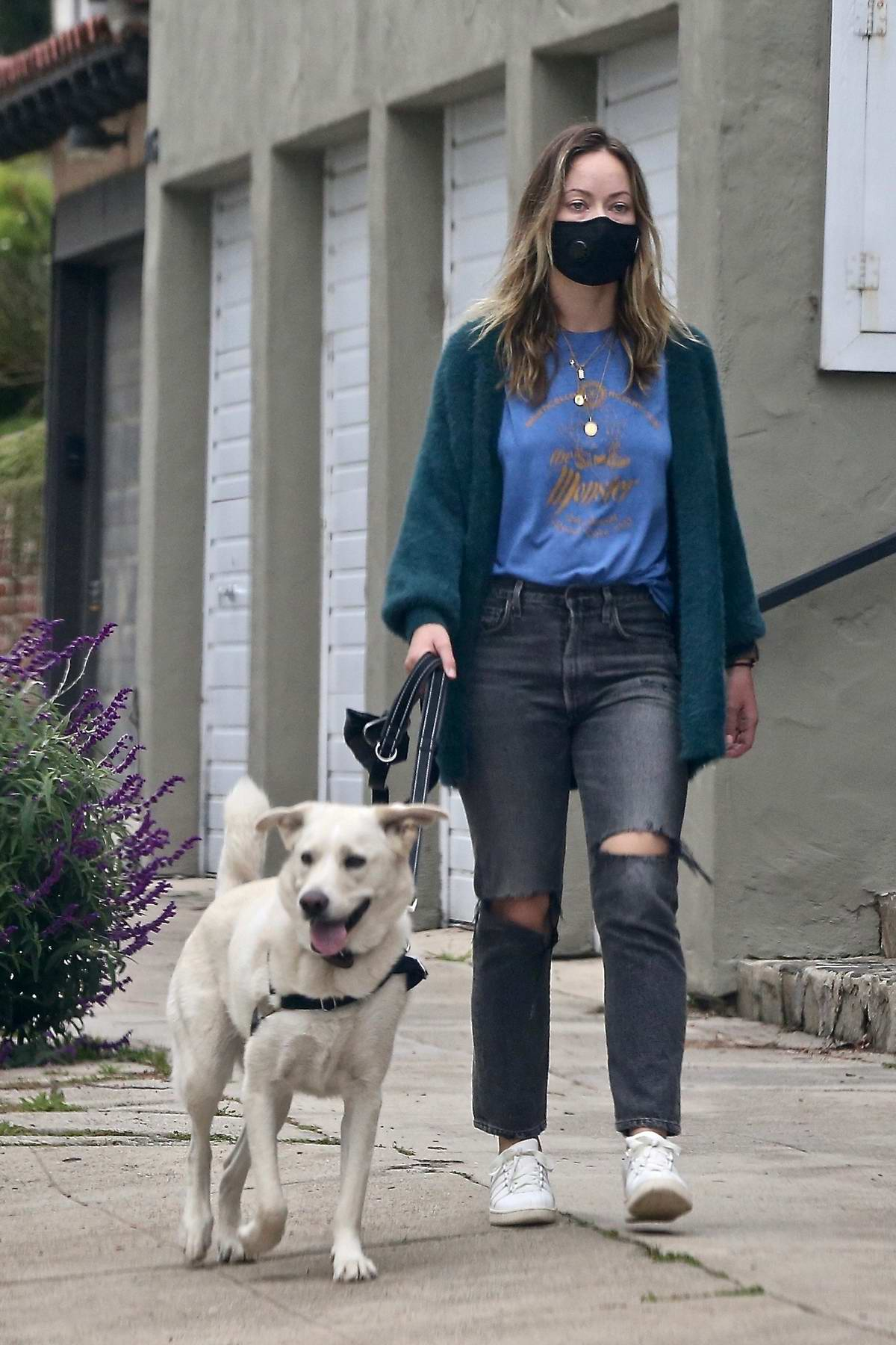Olivia Wilde enjoys a nice stroll with her daughter while walking her dog in Los Angeles