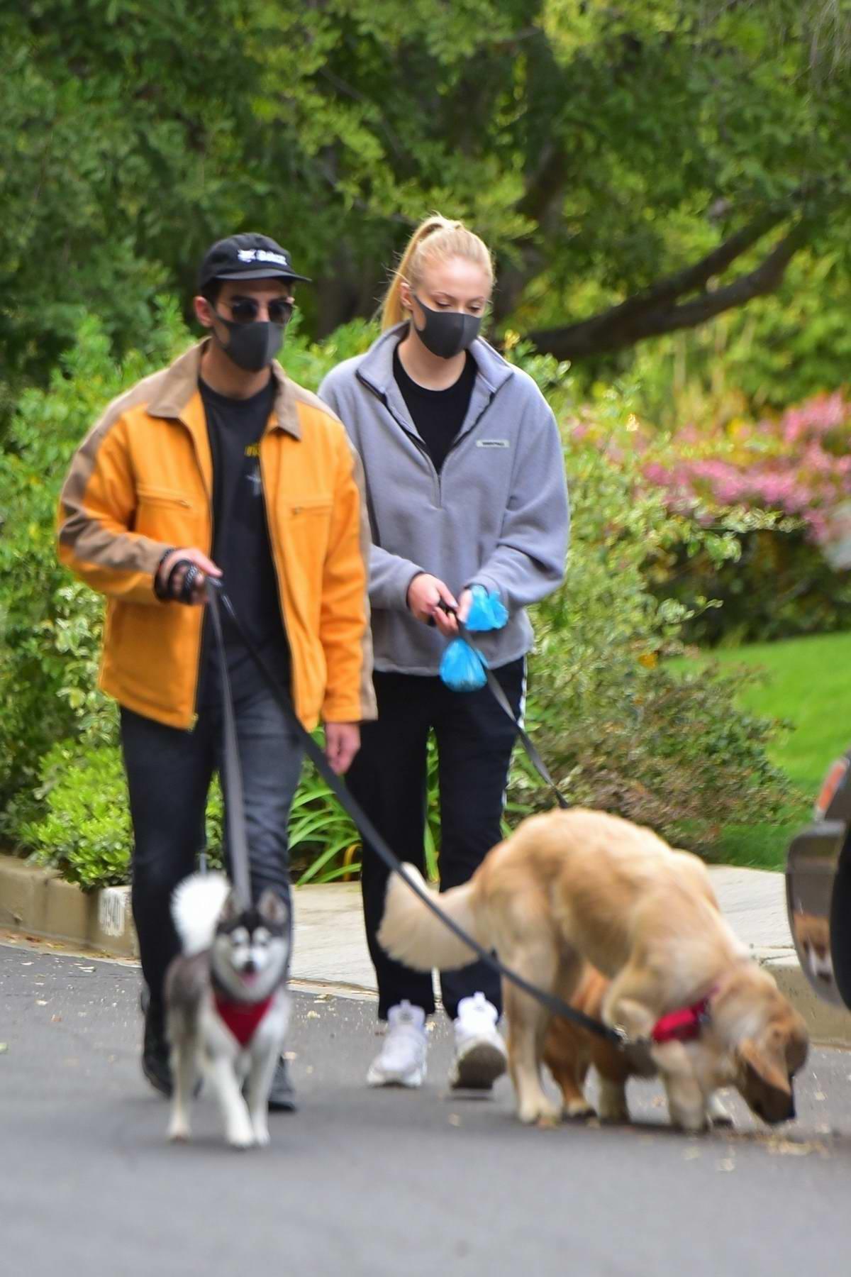 Sophie Turner and Joe Jonas seen wearing matching black masks while walking their dogs in Los Angeles