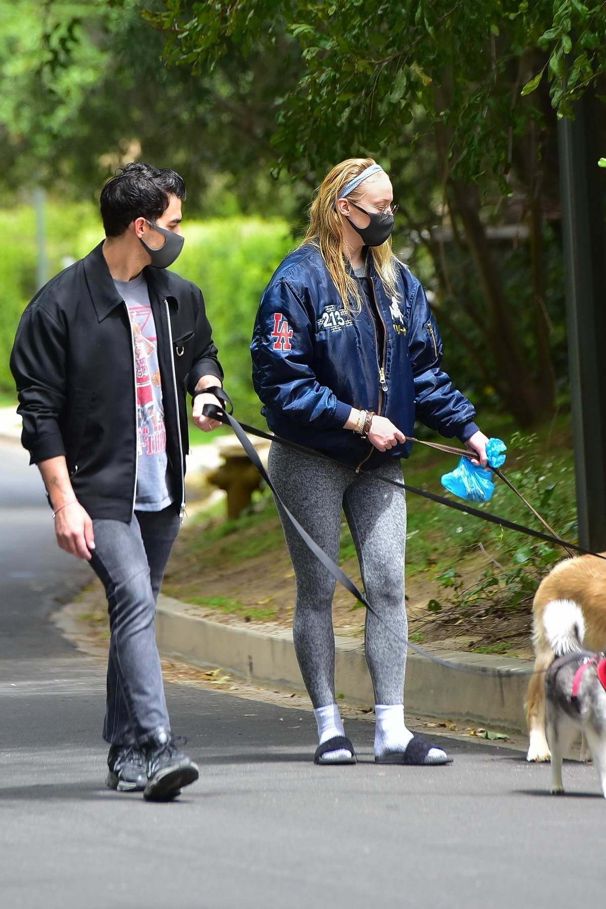 Sophie Turner sports grey leggings with a blue jacket while out to walk the dogs with Joe Jonas in Los Feliz, California
