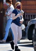 Ariel Winter takes her dog to a veterinarian clinic in Studio City, California