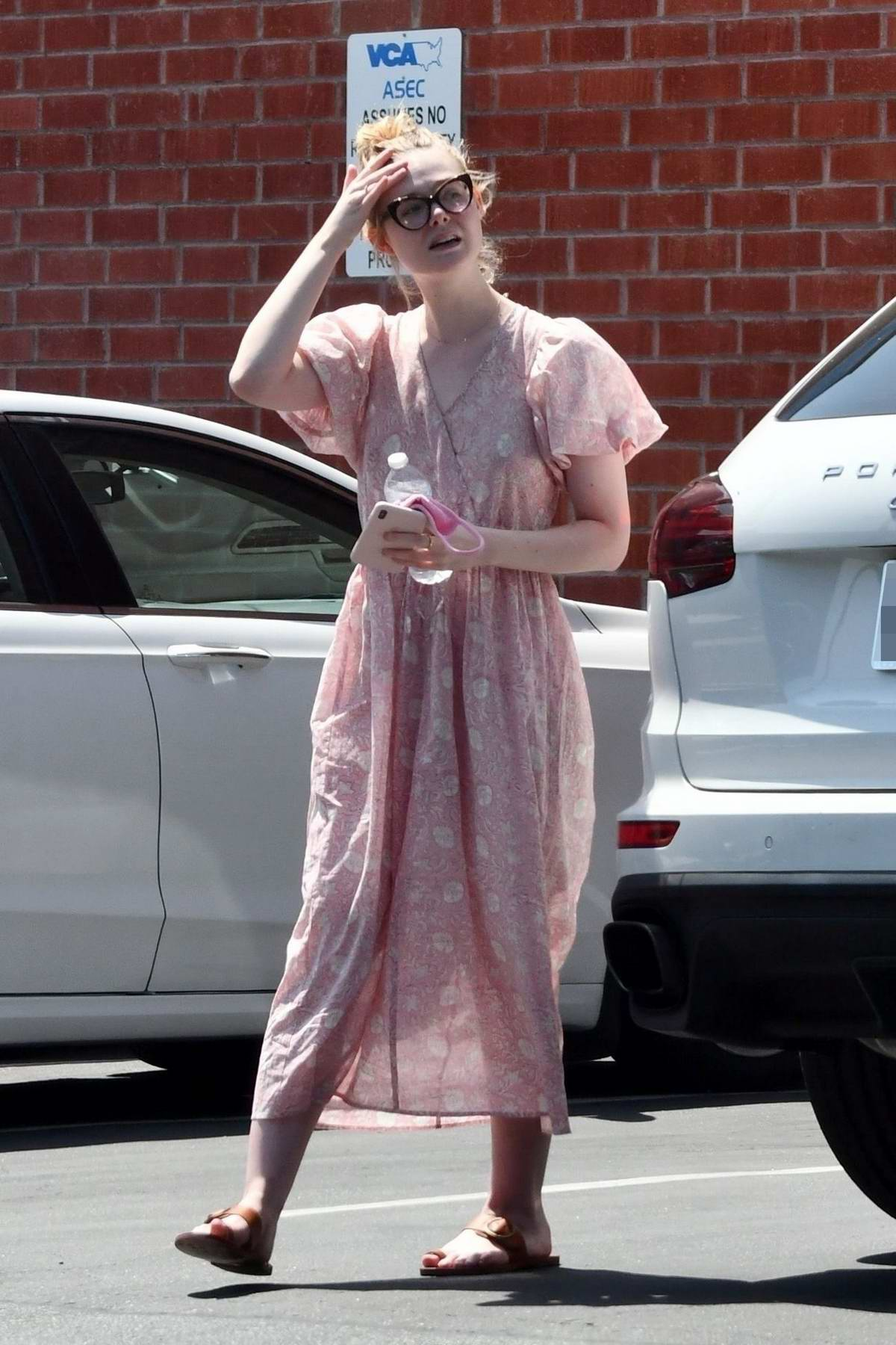 Elle and Dakota Fanning make a trip to the Veterinary hospital with their dog in Santa Monica, California
