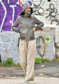Helena Christensen keeps her distance from other pedestrians during juice run in New York City