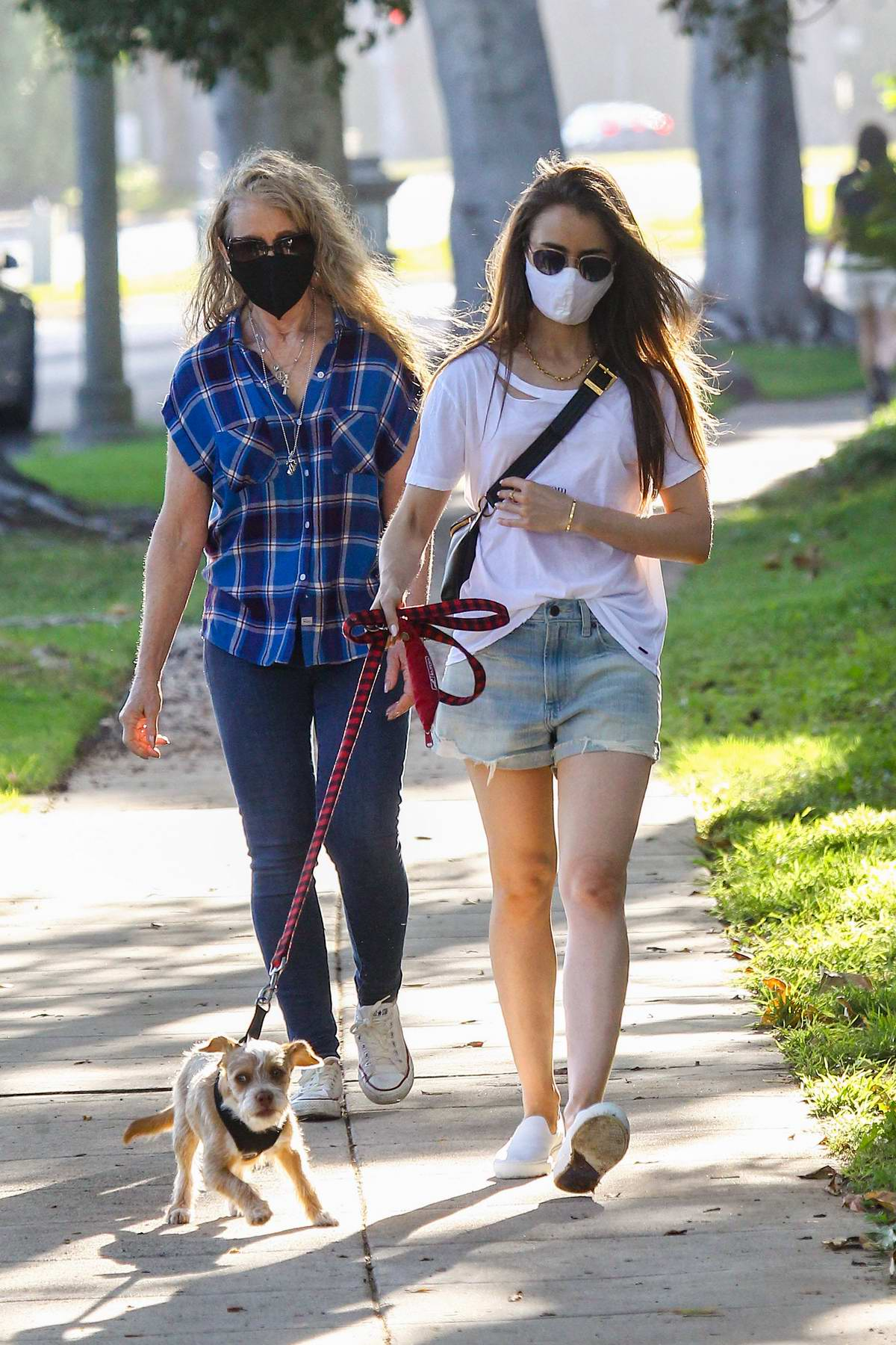 Lily Collins takes her dog out for a walk along with her mom in Los Angeles