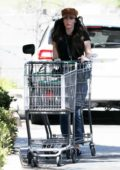 Megan Fox steps out for a grocery run at Erewhon Market in Los Angeles