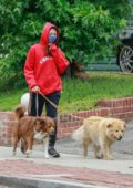 Aubrey Plaza dons red hoodie and a face mask while out walking her dogs in Los Feliz, California