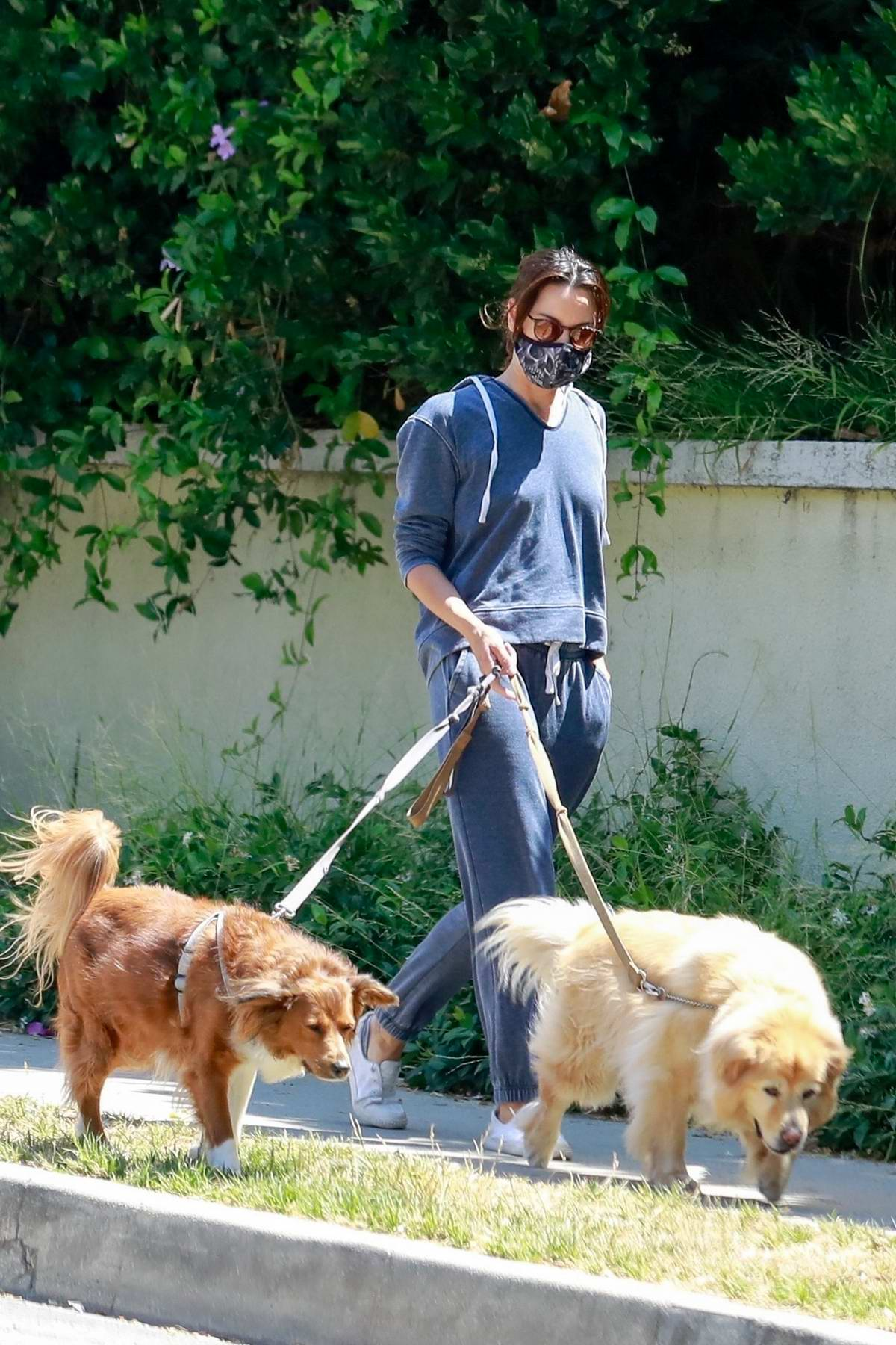 Aubrey Plaza looks comfy in a blue sweatsuit as she takes her dogs out for a walk in Los Angeles