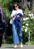 Dakota Johnson visits a friend for a beach side lunch in Malibu, California