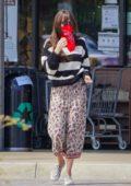 Dakota Johnson wears a floral print skirt and striped sweater as she picks up groceries in Malibu, California