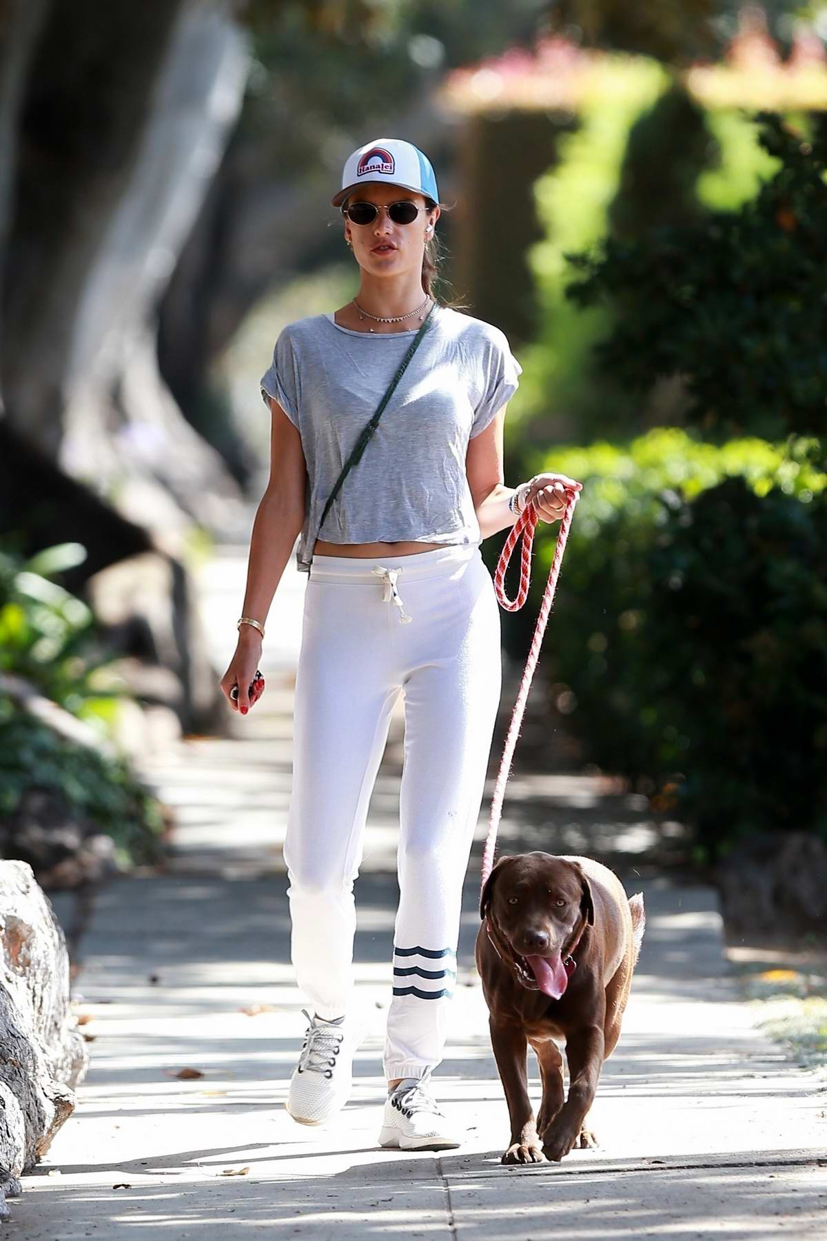 Alessandra Ambrosio enjoys some fresh air while taking her dog for a walk in Santa Monica, California