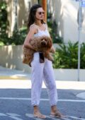 Alessandra Ambrosio stops by a friend's house with her dog before heading to a studio in West Hollywood, California
