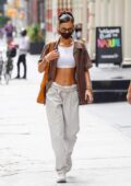 Bella Hadid flaunts her perfect abs as she steps out for some shopping with a friend in New York City