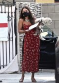 Vanessa Hudgens drops off her dog at the Vet and grabs salad and drinks with a friend at Alfred's in Studio City, California