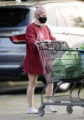 Ariel Winter puts on a leggy display in an oversized red t-shirt during a grocery run at Gelson's in Los Angeles
