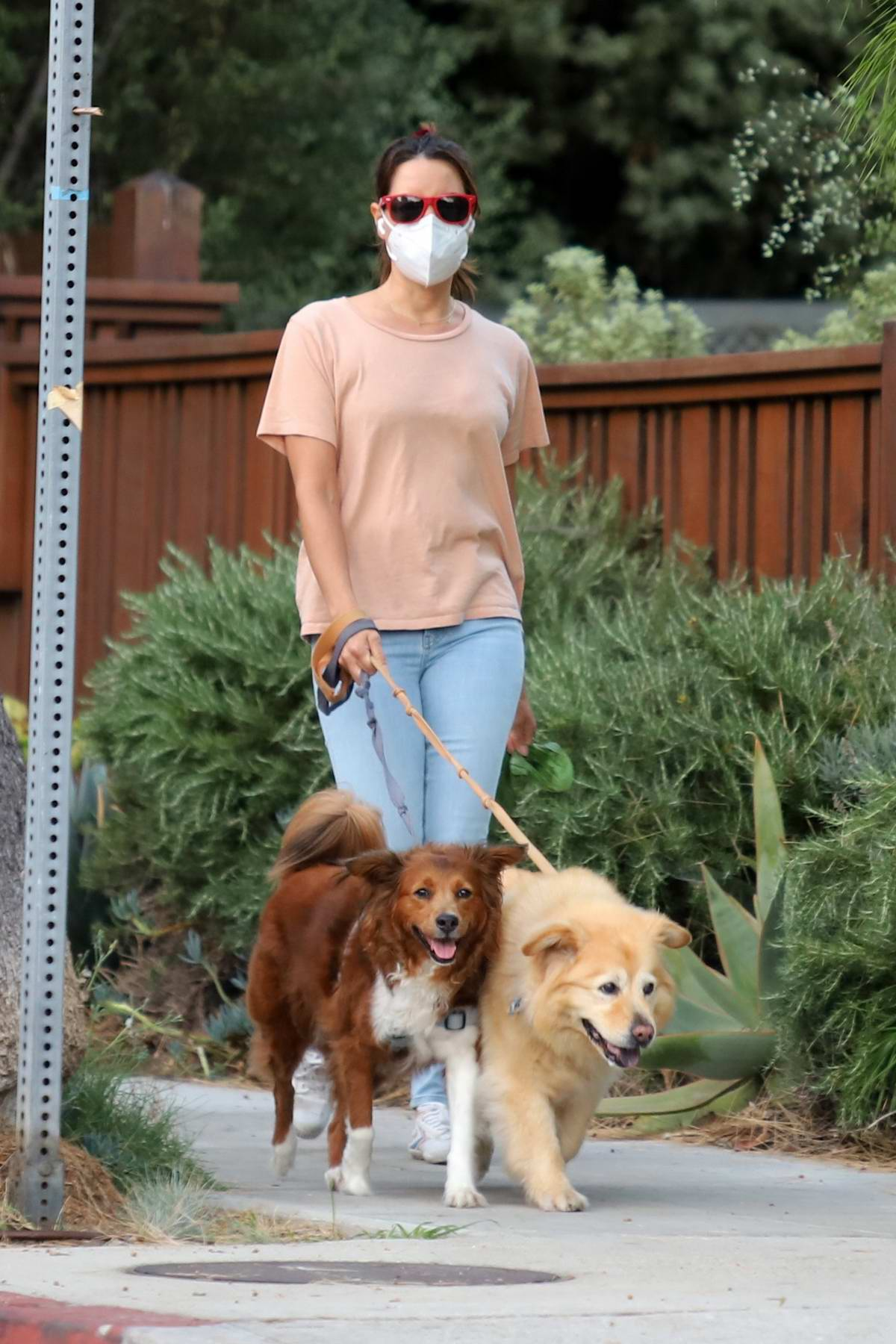 Aubrey Plaza keeps things casual while walking her dogs in Los Angeles