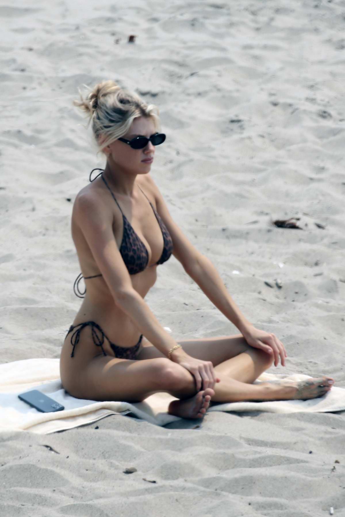 Charlotte McKinney shows off her beach body in an animal print bikini while relaxing at the beach in Malibu, California