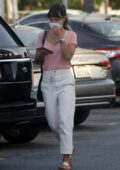 Jordana Brewster stops by the grocery store in Los Angeles