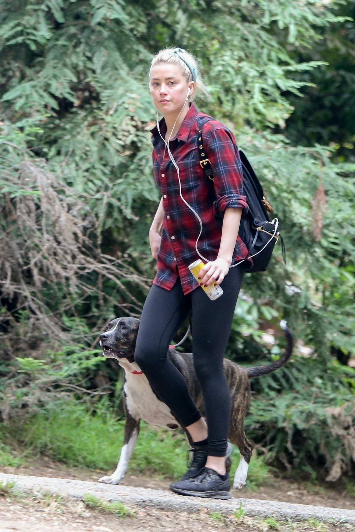 Amber Heard wears a plaid shirt and leggings while out for an early morning hike with her dog in Los Feliz, California