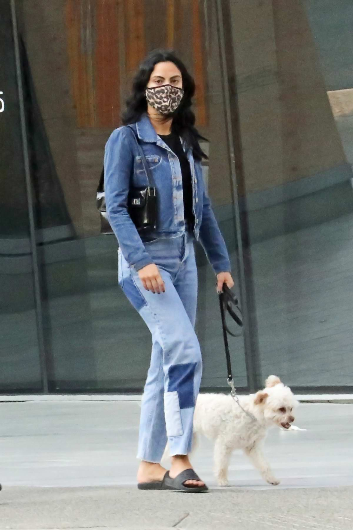 Camila Mendes takes her dog out for a walk with Miles Chamley-Watson in Vancouver, Canada