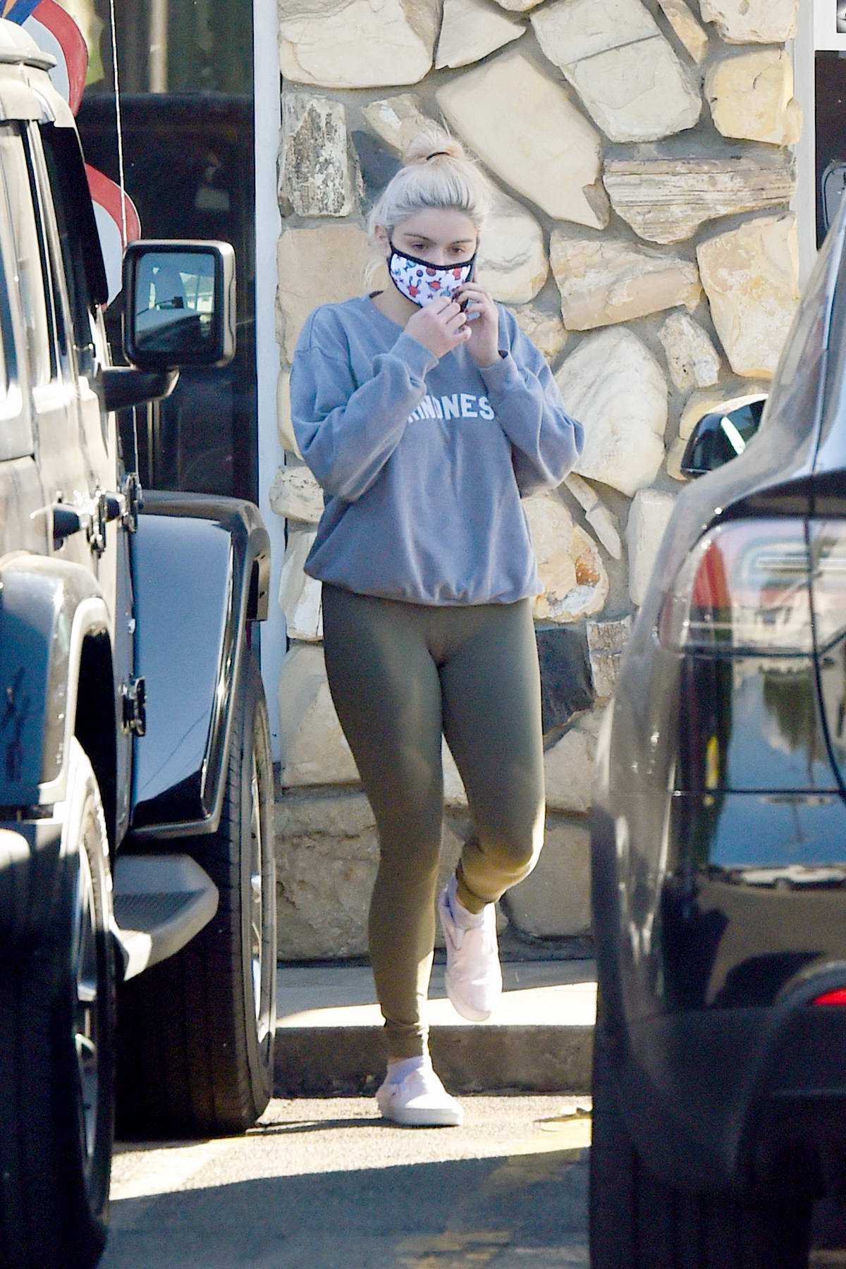 Ariel Winter spotted as she takes her dog to a veterinarian in Los Angeles