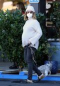 Ashley Tisdale shows her baby bump while shopping with her pups at an antique stores in Agoura Hills, California
