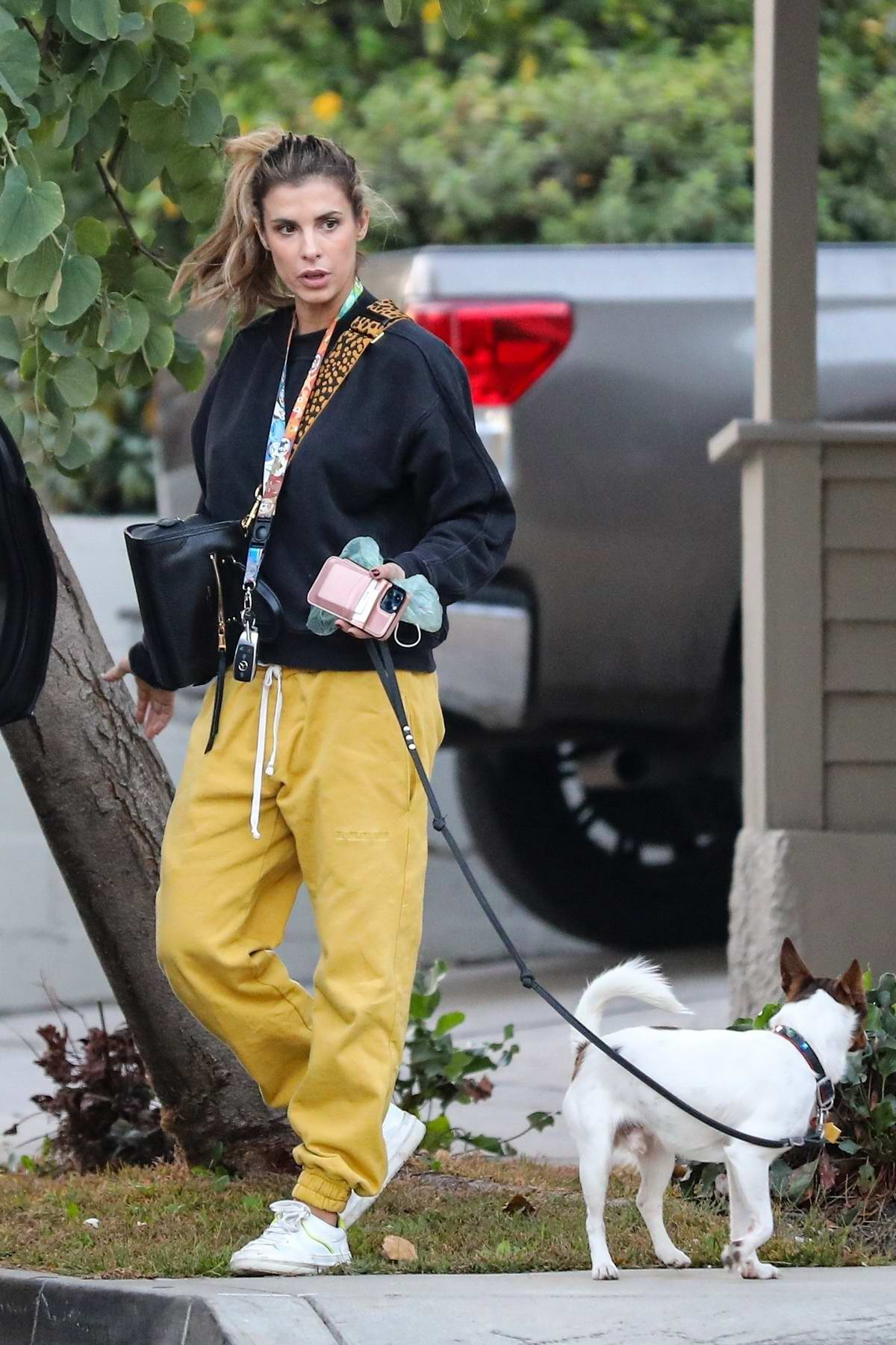 Elisabetta Canalis picks up after her pooch as she takes her daughter and their dog for a walk in Los Angeles