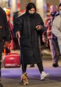 Hailee Steinfeld spotted walking her dog late in the evening in New York City