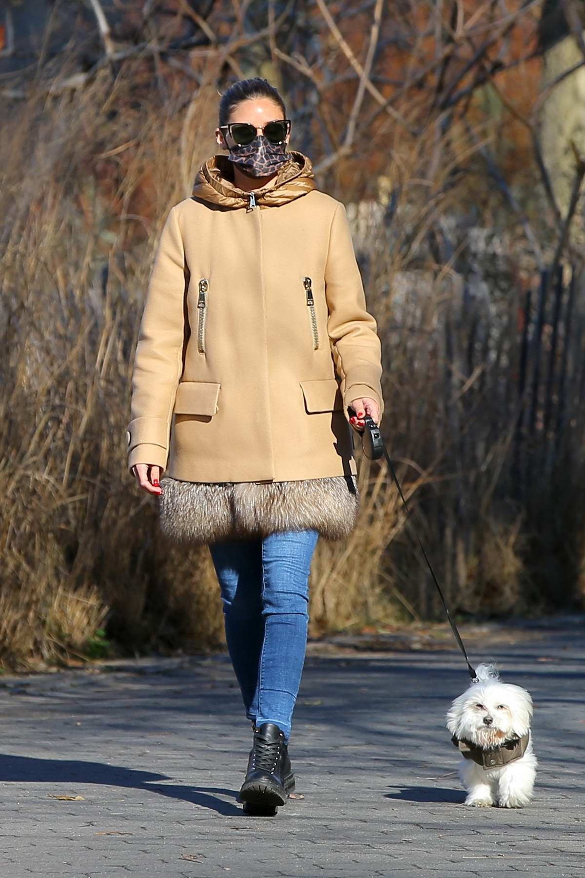 Olivia Palermo walks her dog Mr Butler wearing a fur-trimmed Moncler coat, jeans and lace-up boots in New York