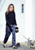 Chrishell Stause keeps it casual as she takes her dog for a walk in Hollywood Hills, California